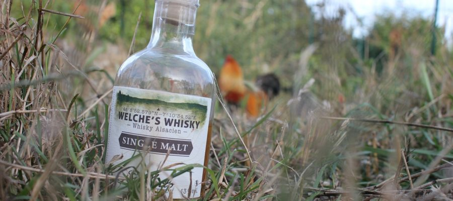 Welche's Whisky Single Malt, Distillerie G. Miclo, Lapoutroie, Gilbert Miclo, Michel Miclo, Bertrand Lutt-Miclo, Daniel Hanser, whisky, Welche's Whisky Single Malt 43%, Welche's Whisky Single Malt Fine Tourbe 43%, Welche's Whisky Single Malt Tourbé 46%, Welche's Whisky Single malt, Welche's Whisky Single malt tourbé, orge, Holstein, Sauternes, Bourgogne, IG Whisky d'Alsace, France, whisky, whisky Français, French whisky, orge, distillation. Matthieu Acar, Xavier Brevet, Lilya Sekkal, dégustation, whisky, académie, masterclass, Paris, atelier, dégustation, whisky