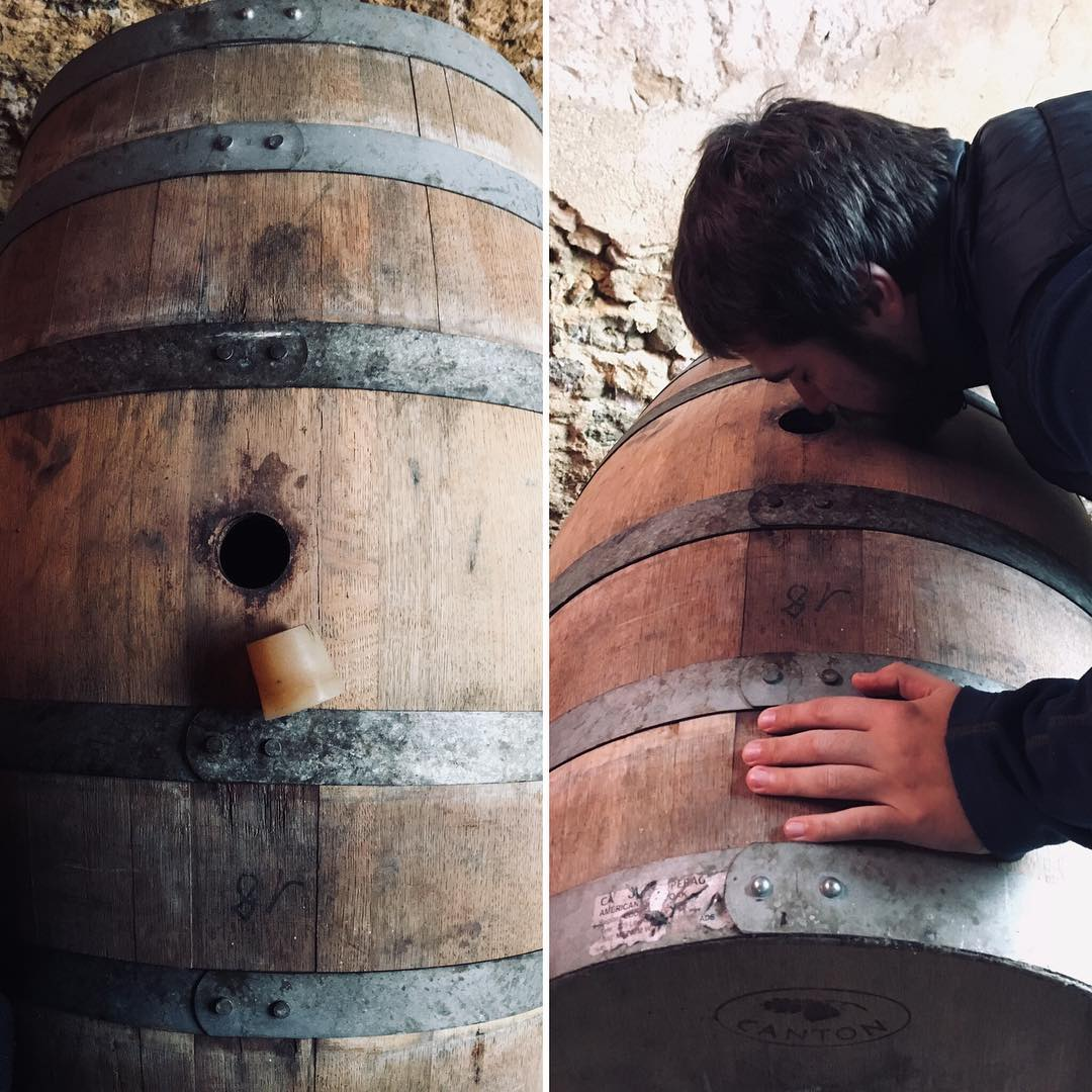fût, fût de whisky, fut, whisky cask, french oak, cuve de fermentation en bois, cuve de fermentation de vin, Coqlicorne, coqlicorne company, Liam Hope, laure-anne civet, laure anne vivet, ugo, Nogent le bernard, Nogent-le-bernard, corn whisky, whisky maïs, whisky maïs et orge, whisky maïs et malt, whisky mais, whisky mais et orge, whisky mais et malt, Appalachian Pot Still, Al-Ambic, Dunnage warehouse, chêne américain, pineau des charentes, fût de pineau des charentes, bourbon barrel, fûts de Jasnières, fût de Jasnières, distillerie française, whisky français, french whisky, France, distillerie, Matthieu Acar, Xavier Brevet, Lilya Sekkal, dégustation, whisky, masterclass, Paris, atelier, dégustation, whisky Francais, whisky français, france whisky.